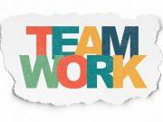 پرسشنامه استاندارد بررسی نقش افراد در تیم